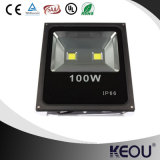 Reflector 2700-6500k de Proyector LED 100W LED del fabricante ISO9001