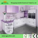 Porte acrylique gravée en relief par configuration de Module de cuisine de fleur (ZH)