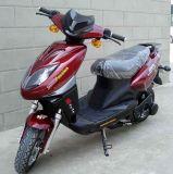 Scooter/moto/bicyclette électriques (STR-C18)
