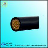 Câble d'alimentation électrique isolé VV et de mise en gaine de PVC de cuivre de conducteur