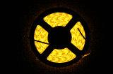 Indicatore luminoso chiaro impermeabile universale del nastro di /LED dei kit della banda di RGB LED
