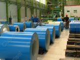 Pleine bobine en acier dure de PPGI (SGCC, SPCC, DX51D, G550)