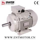 Motor elétrico aprovado da carcaça IE2 do AL do CE
