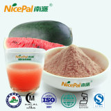中国の工場からの新しいスイカのプラントエキスのスイカのフルーツジュースの粉