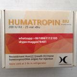 Parte superior do azul do Gh 191AA Humatropin Kig do Bodybuilding de Humatropin da hormona dos esteróides