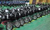 24V de vente chaud badine le vélo électrique de saleté avec le moteur sans frottoir du pivot 200W