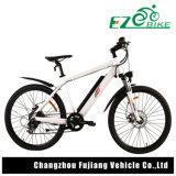 Stadt-Entwurfs-elektrisches Fahrrad mit 26 Inc. dem Gummireifen für Verkauf