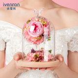 Fiore naturale di 100% Rosa in vetro per il regalo del biglietto di S. Valentino