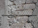 Rete metallica esagonale per il materiale da costruzione della decorazione