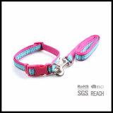 분홍색 애완 동물 제품에 의하여 길쌈된 개 가죽끈 및 고리는 작은 개를 위해 놓았다