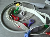 Câble de GE-Rozinn 10 Snap&Clip ECG