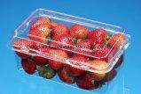 Vacuüm het Vormen zich van de Container van de Doos van het Fruit PVC/Pet/PS van de hoge snelheid Automatische Machine