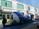 Trasparenza gonfiabile poco costosa della balena, affitto gonfiabile commerciale della trasparenza di tema