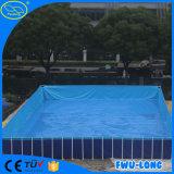 El adulto modelo modificado para requisitos particulares del parque de atracciones embroma la piscina inflable