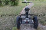 小さい貨物が付いている48V13ahリチウム電池の電気三輪車