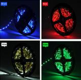Luz de tira flexible de DC12V/24V RGB LED con el Ce RoHS