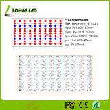 Spektrumapollo-Panel LED der Leistungs-1000W wachsen volles für Pflanzen hell
