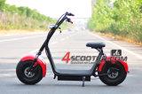정면 유압 완충 장치 Es8004III를 가진 최신 판매 큰 타이어 스쿠터 전기 Citycoco