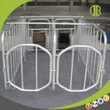 Type neuf stalle galvanisée à chaud de gestation de porcs