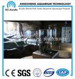 Precio material de acrílico modificado para requisitos particulares del globo de los pescados del proyecto del acuario