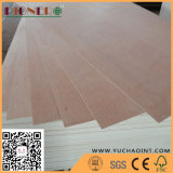 M. Glue Bintangor Commercial Plywood de faisceau de peuplier