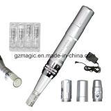 Sistema de Terapia pluma recargable de Microneedle Derma con 2 baterías de litio
