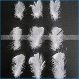 Haupttextilkissen-Füllmaterial-weiße gewaschene Ente versehen unten mit Federn