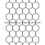 Het Kippegaas van uitstekende kwaliteit, het Hexagonale Opleveren van de Draad