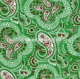 Digital gedrucktes Silk Gewebe