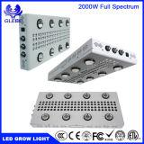 LED는 실내 플랜트 0-100% Dimmable WiFi 통제 1000W 1500W 2000W 고성능을%s 가벼운 플랜트 램프를 증가한다