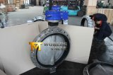 Multi-Standard Vleugelklep Dn700 van het Wafeltje van het Roestvrij staal