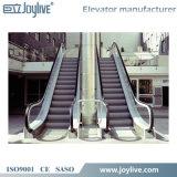 Precio lateral que recorre usado de la escalera móvil en lugar público y subterráneamente