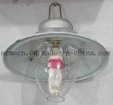 Beste Preis-Biogas-Lampe