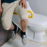De nylon Staven van de Greep van het Toilet van de Veiligheid van de Lading 200kg omhoog-vouwt voor Gehandicapten