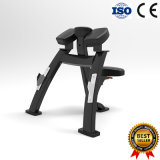 Barbellの体操の適性装置とともに自由な重量装置の二頭筋のカールラック使用
