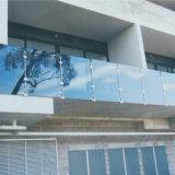 ステンレス鋼の長く有用な生命ピリオドの固定ガラス手すりの柵