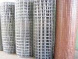 ステンレス鋼および電流を通された溶接された金網の直接工場供給は試供品を供給できる