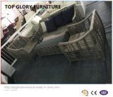 Rotin extérieur moderne/meubles en osier de jardin de loisirs de sofa (TG-6009)