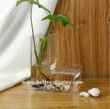 Изготовленный на заказ ясная акриловая ваза пробки