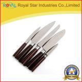 Нож нержавеющей стали высокого качества 6PCS установил с рисбермой инструмента