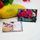Etiqueta engomada de papel personalizada aduana del imán del refrigerador