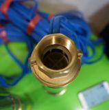 3 بوصة تجويف مضخة عمليّة ريّ شمسيّة شمسيّة مضخة عدة مضخة