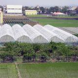 온실 공장을%s 농업 곤충 증거 그물 또는 플라스틱 곤충 스크린