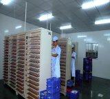 De Navulbare Batterij van het Polymeer van het Lithium van Exc703443 3.7V 1100mAh