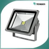 던지기 빛, LED 투광램프 1000W