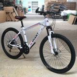 Vélo de montagne de carbone de sport de qualité (ly-a-17)
