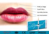Reyoungelの注射可能なHyaluronic酸の皮膚注入口Ha Dermaの注入口