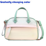 Bags Candy Color zwei der spätesten Art-Dame Ton-Handtaschen