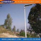 Lumière solaire Integrated de jardin de réverbère de panneau solaire de DEL 60W