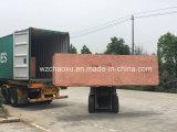 Alta qualità, capacità elevata, vuoto dei bagagli di PC+ABS che forma macchina